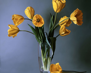 Tulipani Gialli – Special Limited Edition on Canvas and Metal