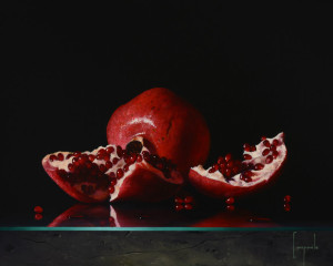 Study of Pomegranate – Special Limited Edition on Canvas and Metal
