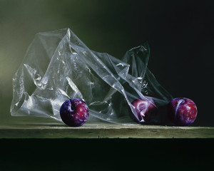 Plums in Plastic – Limited Edition Giclee Print
